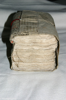 Netzwerke der Nonnen. Edition und Erschließung der Briefsammlung aus Kloster Lüne (ca. 1460-1555)
